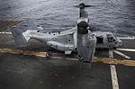 Ospreys take over 150318-M-JT438-058.jpg