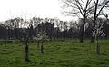 Oud-Valkenburg, Genhoes, omgeving11.jpg