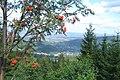 Póżne lato w Górach Izerskich - panoramio.jpg