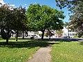 P5089425 Naturdenkmal Wiener Neustadt-033.JPG