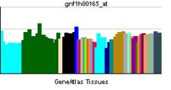 PBB GE IL1F8 gnf1h00165 ĉe tn.png