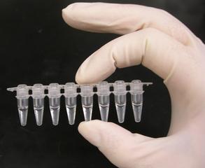PCR brønde