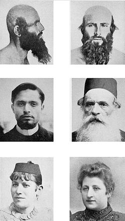 popular modern essayists