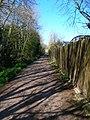 Paddock Lane - geograph.org.uk - 765987.jpg