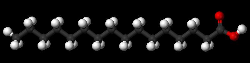 Modell av palmitinsyra.