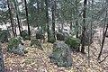 Panssariestettä Imatralla Kotipellon mäellä 2.JPG