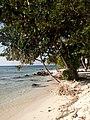 Pantai di Pulau Ujung Gelam.jpg