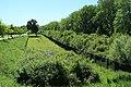 Parc départemental de la Haute-Île à Neuilly-sur-Marne le 25 mai 2017 - 12.jpg