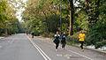 Park Drive, Central Park (6435403867).jpg