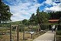 Parque Biológico de Vinhais - Portugal (34874804841).jpg