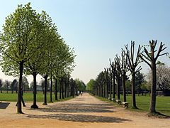 Path (1) (archaeological park Xanten, Germany, 2005-04-23).jpg