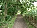 Path - geograph.org.uk - 242291.jpg