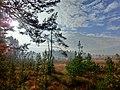 Paulusweiher - panoramio.jpg