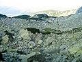 Peisajul glaciar din Parâng - panoramio.jpg