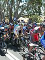 Peloton 1, Checker Hill, TDU 2010 Stage 2.JPG