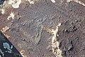 Petroglyphs from Ukhtasar 15092019 (23).jpg