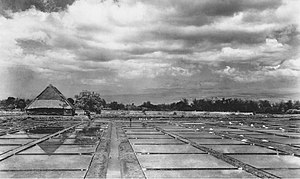 Salt industry in Las Piñas - Production of sea salt by solar evaporation of water from the brine of the sea circa 1940