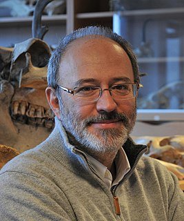 Francesco dErrico (b.1957) Italian archaeologist