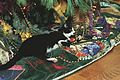 Photograph of Socks the Cat Laying next to the White House Christmas Tree- 12-21-1993 (6461510943).jpg