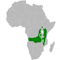 Phyllastrephus cabanisi distribution map.png