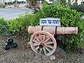 PikiWiki Israel 28462 Vered Jericho.JPG