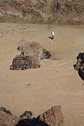 Plémont beach 03.JPG