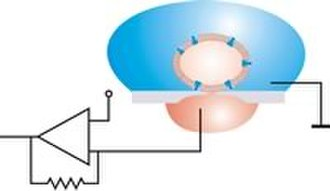 Electrophysiology - Image: Planar patch model