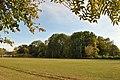 Plotycha-park-14101740.jpg