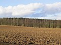 Ploughed field at Bloomfield - geograph.org.uk - 352829.jpg