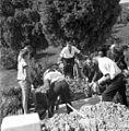 Pogreb mame Marjane Umek, Škrljevo 1961 (3).jpg