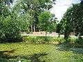 Pond, Ashwells Road, Crow Green, Brentwood, Essex - geograph.org.uk - 25980.jpg