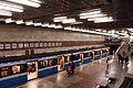 Pozniaky metro station Kiev 2011 06.jpg