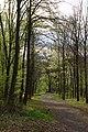 Praha, Hostivař, Hostivařský lesopark, cesta II.jpg