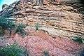 Precambrian-Cambrian nonconformity (Sawatch Sandstone over Pikes Peak Granite; Ute Trail, Manitou Springs, Colorado, USA) 3.jpg
