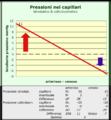 Pressione in capillari.png