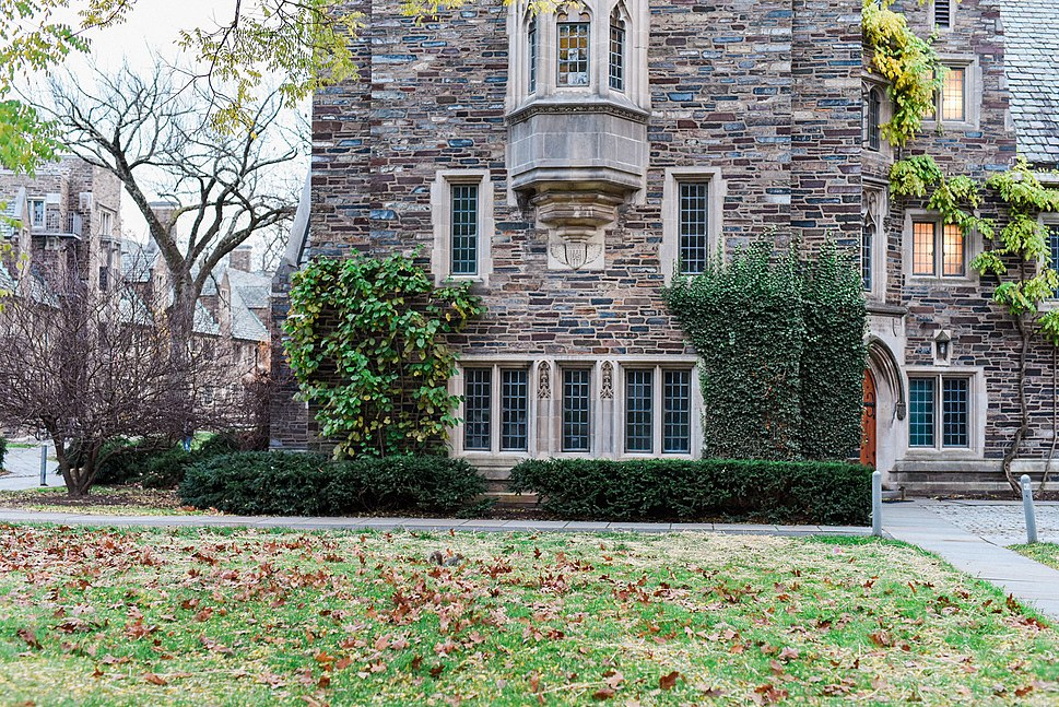 Princeton III