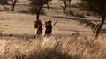 Professional hunter with a hunting gues Kalahari Namibia 02.png