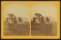 Prospect House, Bethlehem, N.H, from Robert N. Dennis collection of stereoscopic views.png
