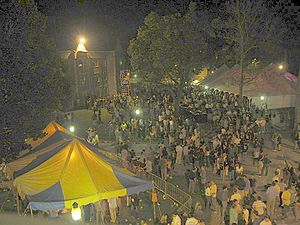 Princeton Reunions - Part of the crowd at the 5th reunion area in 2003.