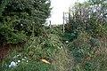 Public footpath off Green Lane - geograph.org.uk - 261691.jpg