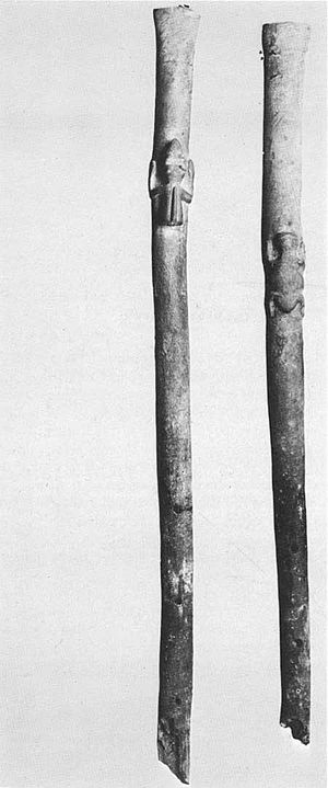 Anasazi flute - Flutes carved with tadpoles found in Pueblo Bonito in the Chaco Culture National Historical Park.