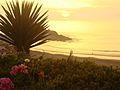 Puerto Fiel - Peru 04.jpg