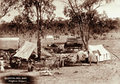 Queensland State Archives 2255 Kangaroo scalpers camp with tents and wagonette 1897.png