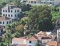 Quinta Florença, Funchal, Madeira - IMG 5470 (cropped).jpg