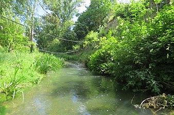 Río Oca 2.jpg