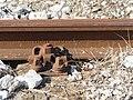 Rail ZENICA M 456 59 VI.jpg