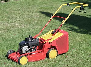 Small engine - Rotary lawn mower, with a vertical shaft engine
