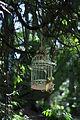Ravenna Park - birdcage 02.jpg