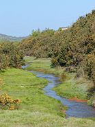 Recultivated Mining Area Cornwall