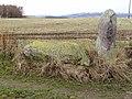 Recumbent Stone Circle at Cairnfauld Farm Aberdeenshire - geograph.org.uk - 947309.jpg
